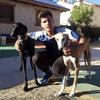 Antonio: Campamento canes y cachorros