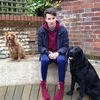 Sam: Dog Sitter in Tonbridge