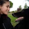 Clara: Paseadora de perros en la zona Las Rozas. 🐶