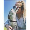 Megan: Trusted dog sitter