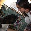 Carol: Cuidadora de perros en Palma