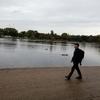George: Puppy Walks In London