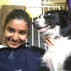 Vanessa : Friendly Dog Sitter 😊😊😊