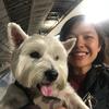 Jj: Friendly dog walker in central London