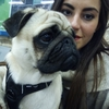 Maria: Professional trustworthy pet walker and sitter in Uxbridge and surrounds