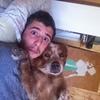 Kevin: Dog Sitter Velaux et alentours