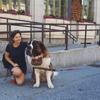 Chloe: Dog lovers in Hackney!