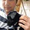 Maxime: Étudiant vétérinaire, dogsitter