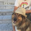 Kjara: Hundeverliebt 🐾