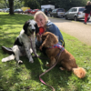 Rose: Dog Walker/Dog Sitter Wirral