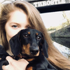 Laura : Laura's Doggo Care - With Daisy Dashchsund