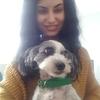 Sammi: Dog sitter in Birmingham