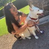 Amy : Dog lover in Liverpool.