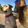 Lucia: Cuidadora de perros en Pozuelo de Alarcón y alrededores