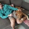 Bruno : Paseobrudog único e irrepetible
