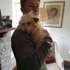George: Top Notch Dog Care