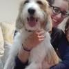 Carmen: Cuidadora de perros en León