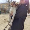 Esther: Estudiante de veterinaria y amante de los perros