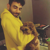 Hamza: Experienced Dog walked and trainer