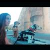 Carmen: Amigosdog