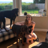 Madison: Dog sitter and/or walker in Glasgow