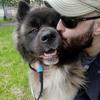 Nicola: Dog walker