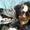 Stasha: Dog walking / minding