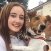 Kirstin: Dog sitter/walker in Maynooth