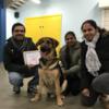 Sivanandakumar: Dog's heaven
