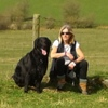 Vivien: Dog loving carers Beoley, Redditch