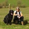 Vivien: Dog loving carers Beoley, Redditch