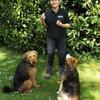 sarah: Dog walker and pet care service Ross on Wye