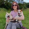 Tracey: Jay Walking   Dog walking in Balbriggan, dedicated to my puppy Jay