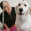 Sarah: Sarahs Animal Care