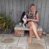 Tammy: Tammy's doggie-motel
