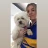 Rachel: Dog walker and sitter