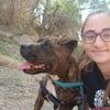 Alba Isabel: Paseadora canina y gran amante de los peludos ofrece servicios en Málaga.