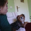 Valentina: Cuidadora de perros en Granada