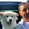 Thomas: Hundefreund sucht Hundefreude