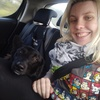 Rebecca: Dog minder/walker in Drogheda