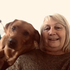 Helen : Dog Companion in south Bristol BS13