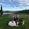 Adriana : Pet hugger