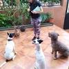 Noelia: Farah y Noelia:el excelencia en el cuidado de tu mascota