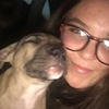 Leah: Dog sitter in Carlow/Waterford