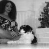 Jasmine: Jasmine's Doggy Daycare
