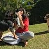 Mariana : Estará como en casa - SEVILLA CENTRO - English, Français e Português