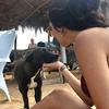 Silvana: Amante de los animales en alicante