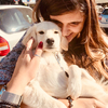 Angeliki : Student who lives and cares about dogs