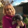 Laurie : Des vacances pour votre chien