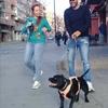 Julia - Hebert: Mimos y cuidados de Mascotas, Perr@s,Gat@s, tod@s son bienvenid@s